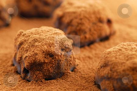 Chocolate truffles stock photo, Macro image of dark chocolate truffles sprinkled with cocoa powder by Elena Elisseeva