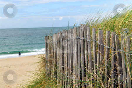 Beach fence stock photo, Ocean with sandy beach and wooden fence by Elena Elisseeva