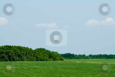 Crop Duster stock photo, A frontal view of a crop duster spraying some fields by Richard Nelson
