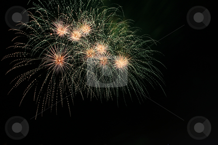 Sea urchin fireworks stock photo, Sea urchin fireworks against the dark sky by Jonas Marcos San Luis