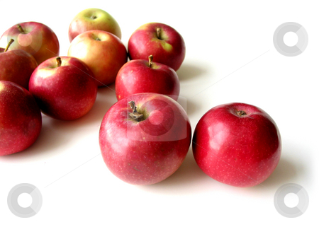Apples 5 stock photo, Macintosh apples on white background, closeup by Elena Elisseeva