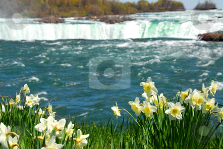 Niagara Falls stock photo, Niagara Falls in spring by Elena Elisseeva
