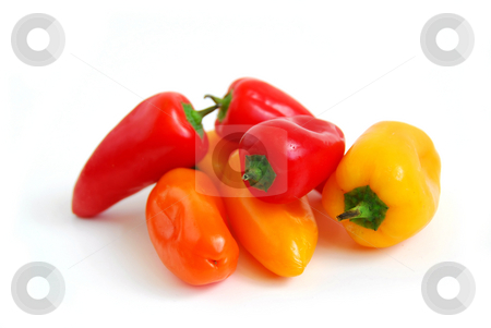 Colorful peppers stock photo, Colorful peppers on white background by Elena Elisseeva