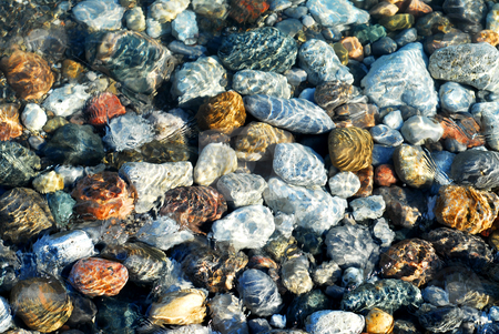 Colorful pebbles stock photo, Colorful rounded pebble in clear water with sun reflections by Elena Elisseeva