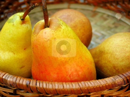 Pears in a basket stock photo, Colorful bartlett pears in a basket by Elena Elisseeva