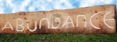 Sign of Abundance stock photo, The word abundance carved in a log of wood, outdoors on grass and under a cloudy sky by Philippa Willitts