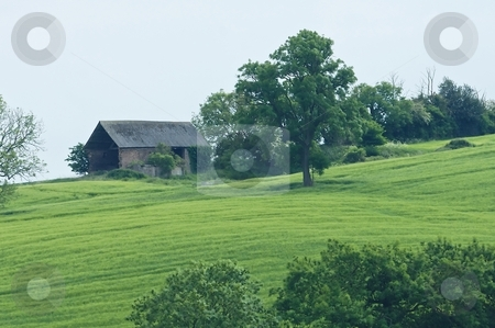 Old Barn and green field stock photo, Old farm barn on rolling hill with green field and large tree by Stefan Edwards