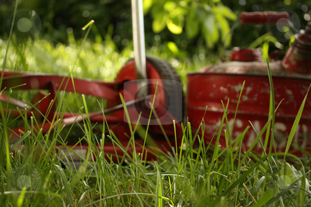 You Choose stock photo, An environmentally friendly red push mower beside an old-fashioned red can of gasoline, both sitting in a lawn that needs cutting or mowing.   Shallow DOF with the focus on the grass and the mower and gas can blurry. by Jessica Tooley