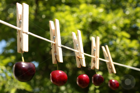 How Clean Is Your Food? stock photo, A concept shot relating to organic and healthy eathing, and chemical and pesticide use.  Five red cherries hung on a clothesline with wooden pegs. by Jessica Tooley