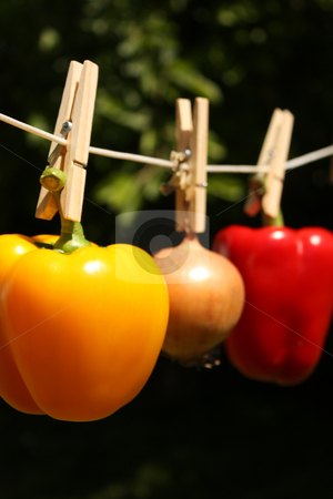 How Clean Is Your Food? stock photo, A concept shot relating to organic and healthy eathing, and chemical and pesticide use.  A yellow bell pepper, a red bell pepper, and an onion hung on a clothesline with wooden pegs. by Jessica Tooley