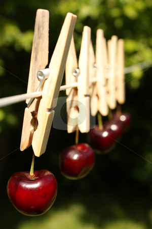 How Clean Is Your Food? stock photo, A concept shot relating to organic and healthy eating, and chemical and pesticide use.  Five red cherries hung on a clothesline with wooden pegs. by Jessica Tooley