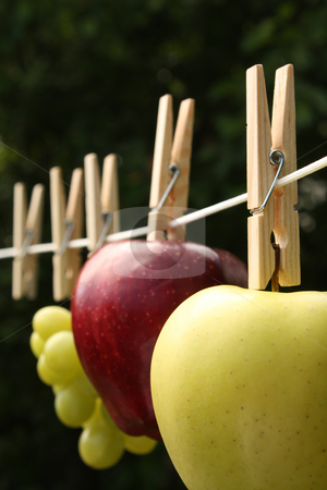 How Clean Is Your Food? stock photo, A concept shot relating to organic and healthy eating, and chemical and pesticide use.  Two apples, one red one golden, and a bunch of grapes, hung on a clothesline with wooden pegs. by Jessica Tooley