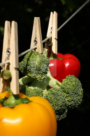 How Clean Is Your Food? stock photo, A concept shot relating to organic and healthy eating, and chemical and pesticide use.  A yellow bell pepper, a red bell pepper, and a head of broccoli hung on a clothesline with wooden clothespegs by Jessica Tooley