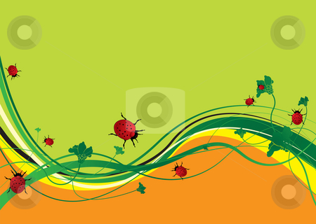 Ladybird field stock photo, Green and orange abstract background with ladybirds eating by Michael Travers
