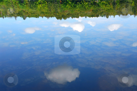 Reflections water stock photo, Reflections of clouds and forest in a still water of a wilderness lake by Elena Elisseeva