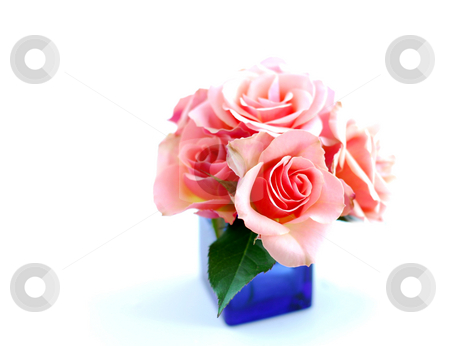 Rose bouquet stock photo, Rose bouquet in a blue vase on white background by Elena Elisseeva