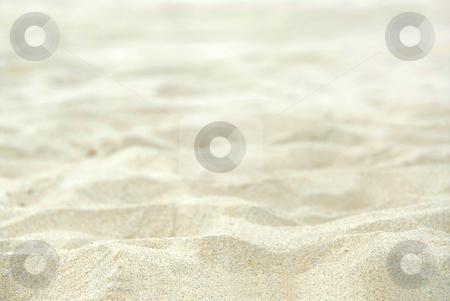 Sand background stock photo, White sand background by Elena Elisseeva