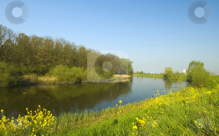 Polder landscape stock photo, A typical dutch polder landscape during spring by Claudia Van Dijk