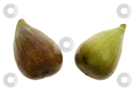 Two Figs stock photo, Two Figs on a white isolated background by Claudia Van Dijk