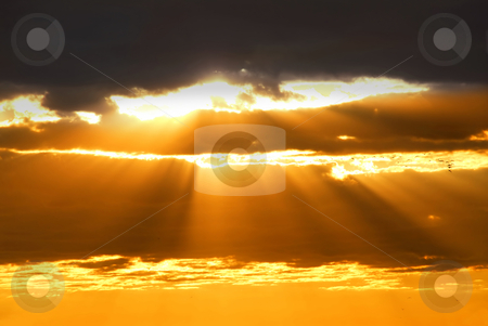 Sun rays stock photo, Rays of sun shining through the clouds at sunset by Elena Elisseeva