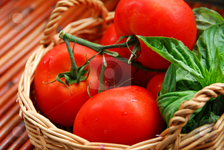 Tomatos and basil stock photo, Tomatos and basil in a basket by Elena Elisseeva