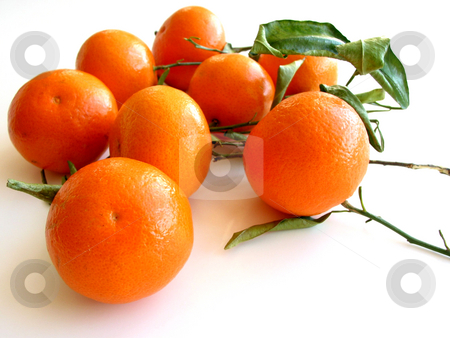Tangerines with leaves on white 3 stock photo, Orange tangerines with green leaves isolated on white background by Elena Elisseeva