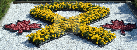 Support Our Troops stock photo, A yellow ribbon made of flowers on some white rocks by Richard Nelson