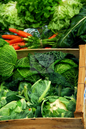 Vegetables stock photo, Fresh assorted vegetables in boxes on farmer's market by Elena Elisseeva