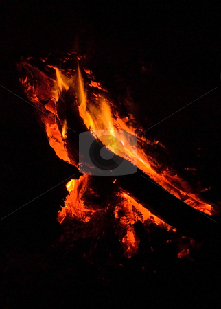 Camp Fire stock photo, A close up image of a camp fire by Stefan Breton