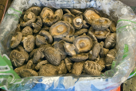 Dried Mushrooms stock photo, Dried Mushrooms at a market in China by Stefan Breton