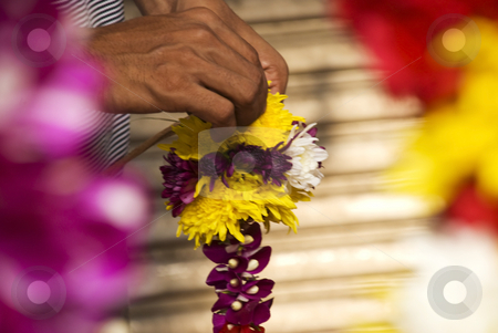 Flower Garland stock photo, An Indian man making a flower garland at an Hindu Temple by Stefan Breton