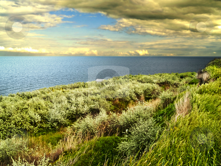 Sea coast stock photo, Grass sea coast storm clouds weather blue by Adrian Costea