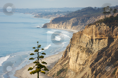 Torrey Pines Beach and Coastline stock photo, Torrey Pines Beach and Coast of San Diego, California by Andy Dean
