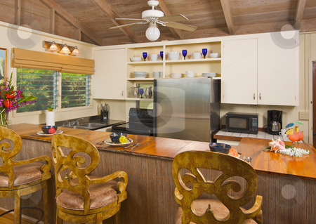 Tropical Kitchen Interior stock photo, Tropical Kitchen Interior by Andy Dean