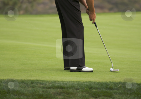 Golf Putting on the Green stock photo, Golfer Putting on the Green one Summer Day. by Andy Dean
