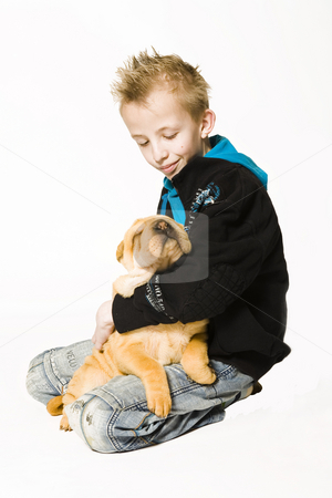Aforable sleeping puppy stock photo, Young boy holding a sleeping sharpei puppy by Frenk and Danielle Kaufmann