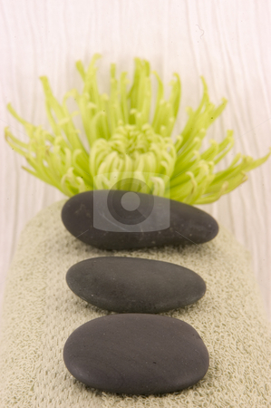 Massage stones stock photo, Massage Stones, Green Aster, and Green Towel by Ariana Bauer