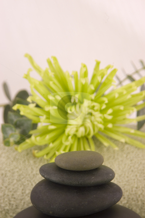 Massage stones stock photo, Massage Stones, Green Aster, and Towel 2 by Ariana Bauer