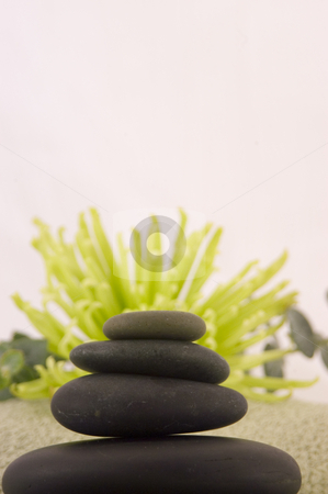 Massage stones stock photo, Massage Stones, Green Aster, and Towel 3 by Ariana Bauer