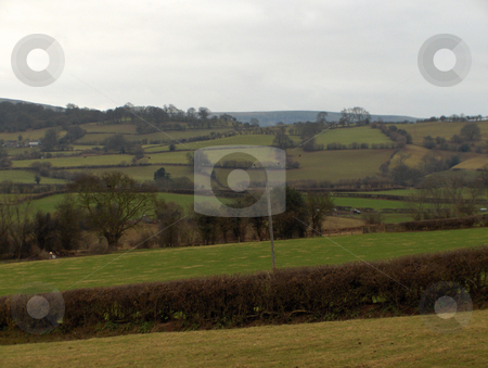 Pastures stock photo, Hedges and walls form small pastures near Hay-On-Wye, Wales. by Jessica Tooley