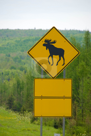 Moose Crossing stock photo, A highway sign warning of moose crossings by Maria Bell