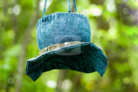 Blue Hat stock photo, A blue hat bird feeder hanging from a tree by Richard Nelson
