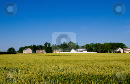 Urban Sprawl stock photo, A new housing develpoment encroaching on farmland. by Robert Byron