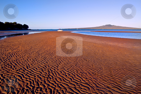 Evening on the beach stock photo, Cheltenham Beach - the low sun casts its colour and deep shadows. by Robin Ducker