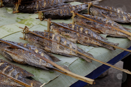 Grilled Fish stock photo, Grilled fish lying on a table with wooden sticks in the fish by Claudia Van Dijk
