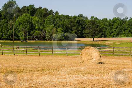 Hay Bale stock photo, Hay Bale by Robert Byron