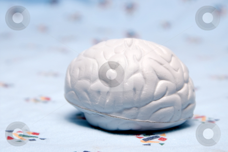 Brain stock photo, A rubber model of a brain on a hospital gown. by Robert Byron