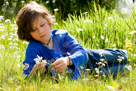 Boy and the flower stock photo, Yoiung child is checking out a flower by Frenk and Danielle Kaufmann
