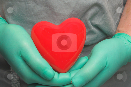 Heart Transplant stock photo, A doctor holding a patients heart in his hand by Robert Byron