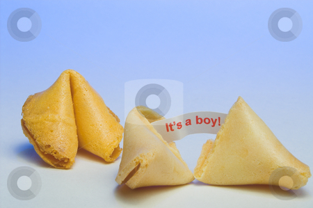 Fortune Cookie - It's a Boy stock photo, A fortune cookie announcing the birth of a baby boy. by Robert Byron